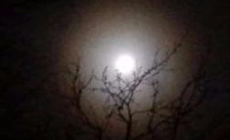 thumb nacht maan 20160124