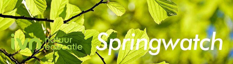 IVN springwatch