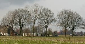 sprokkelbosch2 b300
